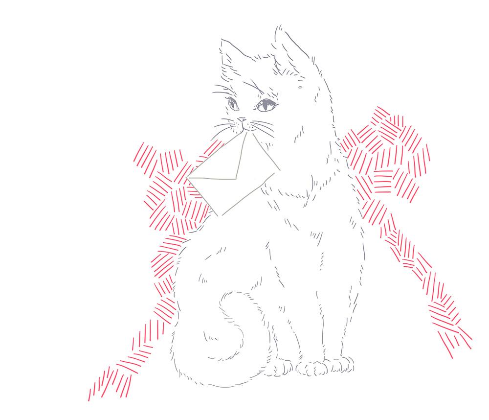 cat_contacts